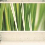 Ecología en clase: ¿conoces los ecoproyectores?