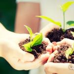 10 actividades infantiles para un mundo más sostenible