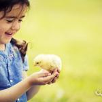Educación humanitaria: otra forma de educar en valores
