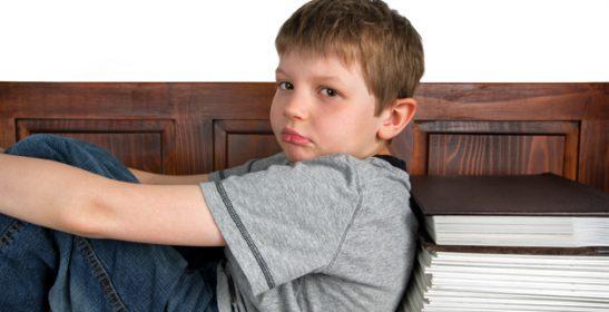 Macrodeberes o homelearning