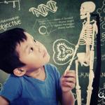 7 recursos educativos para aprender sobre anatomía humana
