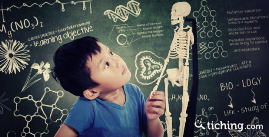 Anatomía humana | Tiching