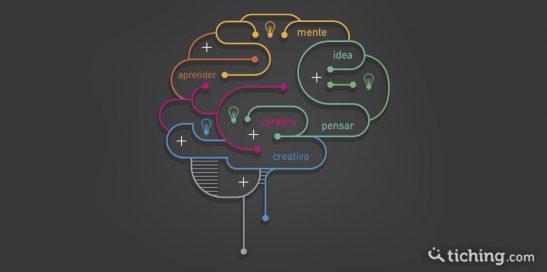 Imagen inteligencia: un cerebro con zonas diferenciadas